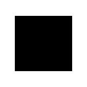 VISIO_Systeme_Referenz_Woodstoig